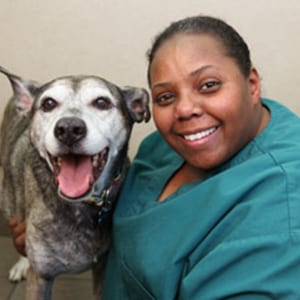 Angela: Veterinary Staff in Melrose