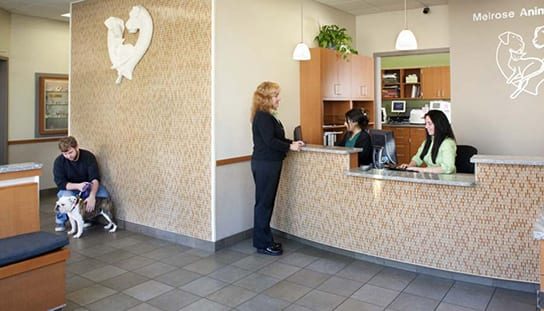 Our front desk: Contact Us in Melrose