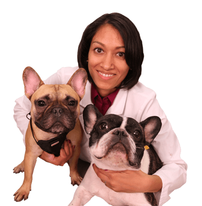 Dr. Shah holding two dogs: Pet Dental Care in Melrose