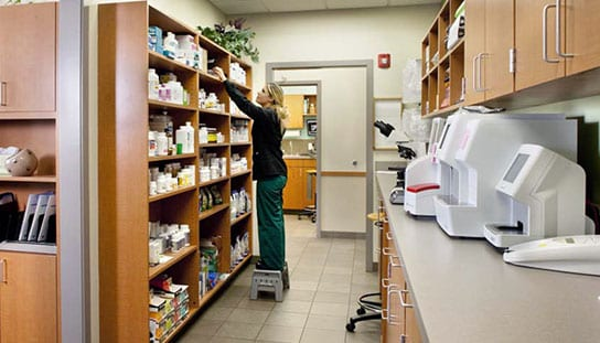 Vet reaching for a prescription: Prescription Refill in Melrose