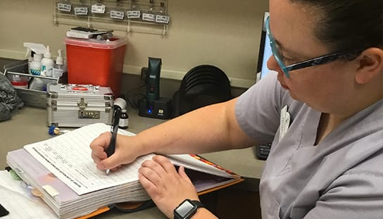 Vet writing on a form: AAHA-Accredited in Melrose